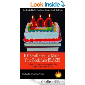 small fires book